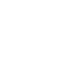 Halo - Feature Icon 10-DART DRUM