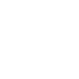 Halo - Feature Icon PUMP ACTION