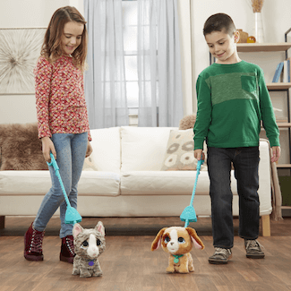 Become the Ultimate Pet Walker